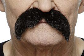Fausse moustache